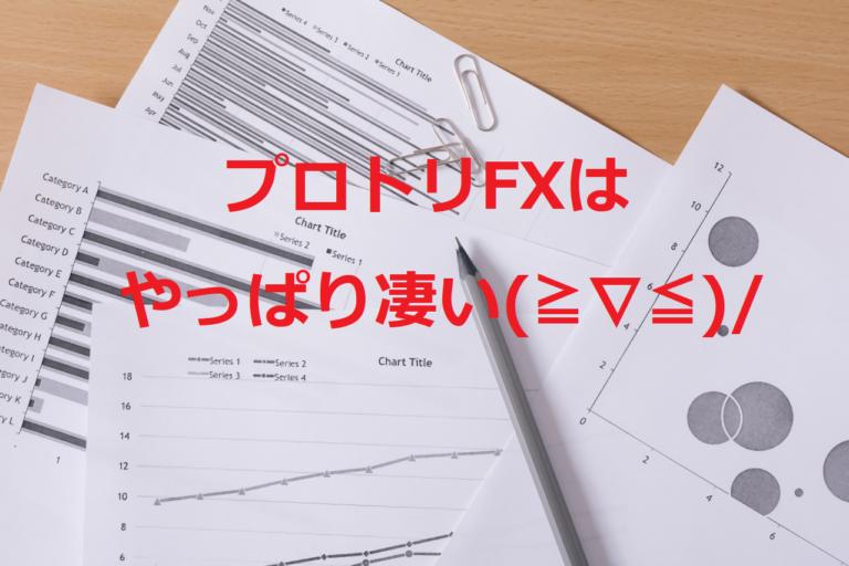 プロトリFX4ヶ月の記録